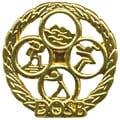 Deutsches Sportabzeichen Kinder_Jugendliche gold